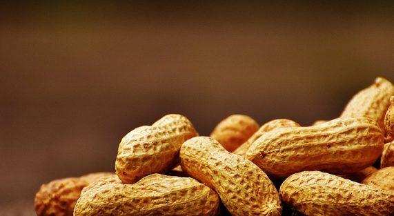 benefici-arachidi